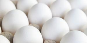Kananmunia kennossa.